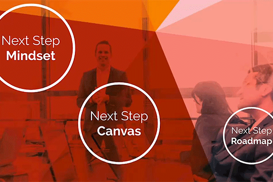 Next Step Mindset and Canvas