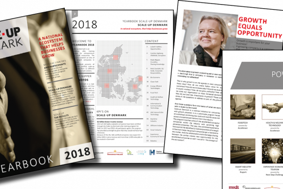 Scale-Up Denmark Yearbook 2018